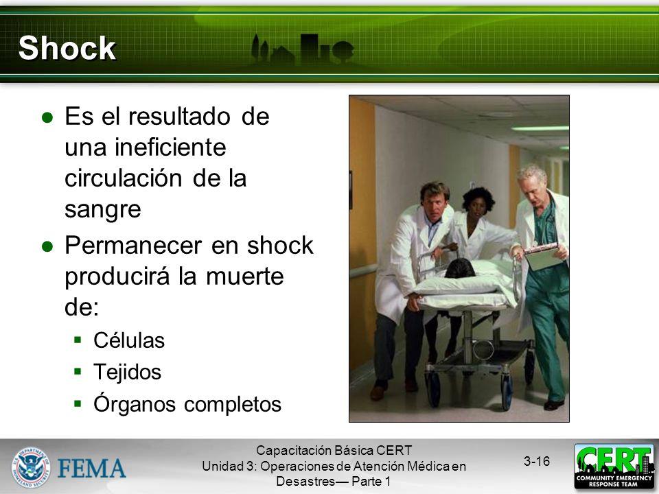 Shock Es el resultado de una ineficiente circulación de la sangre
