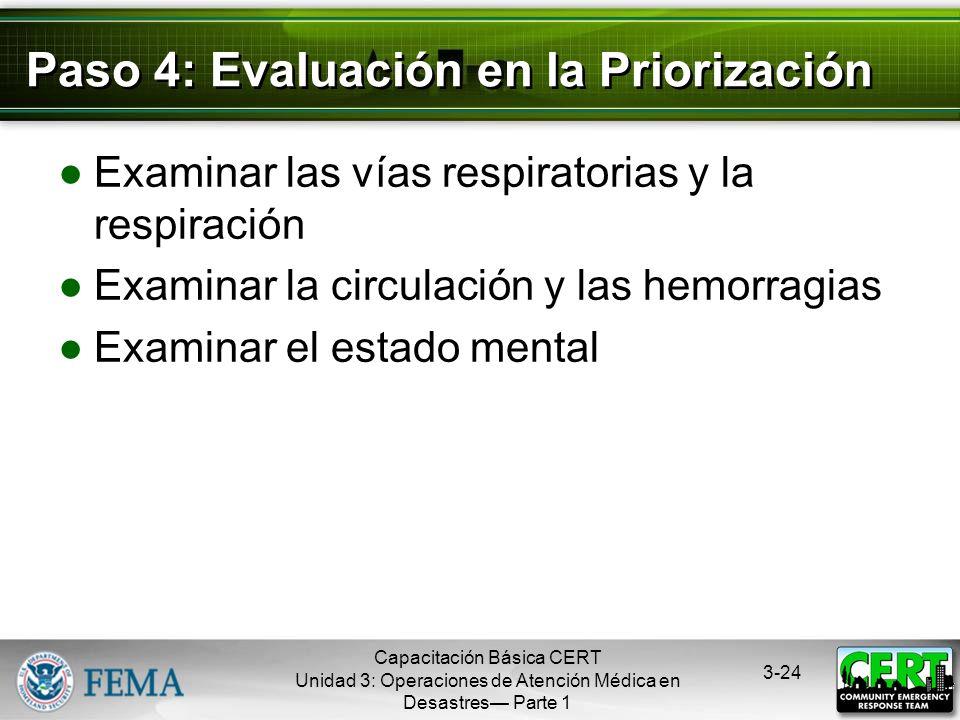 Paso 4: Evaluación en la Priorización