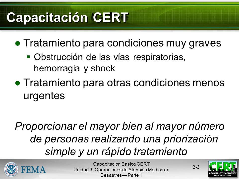 Capacitación CERT Tratamiento para condiciones muy graves