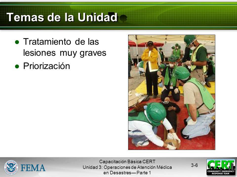Temas de la Unidad Tratamiento de las lesiones muy graves Priorización