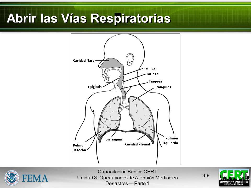 Abrir las Vías Respiratorias