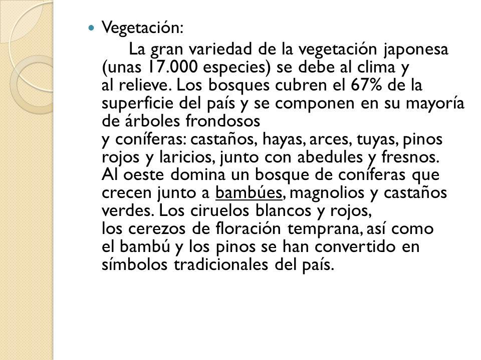 Vegetación: