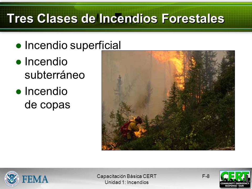 Tres Clases de Incendios Forestales