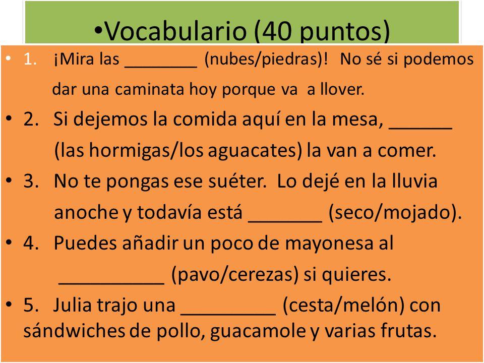 Vocabulario (40 puntos) 1. ¡Mira las ________ (nubes/piedras)! No sé si podemos. dar una caminata hoy porque va a llover.