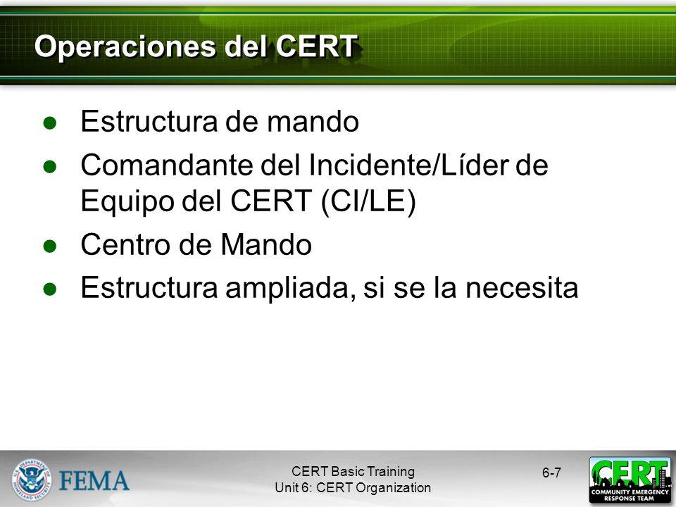 Comandante del Incidente/Líder de Equipo del CERT (CI/LE)