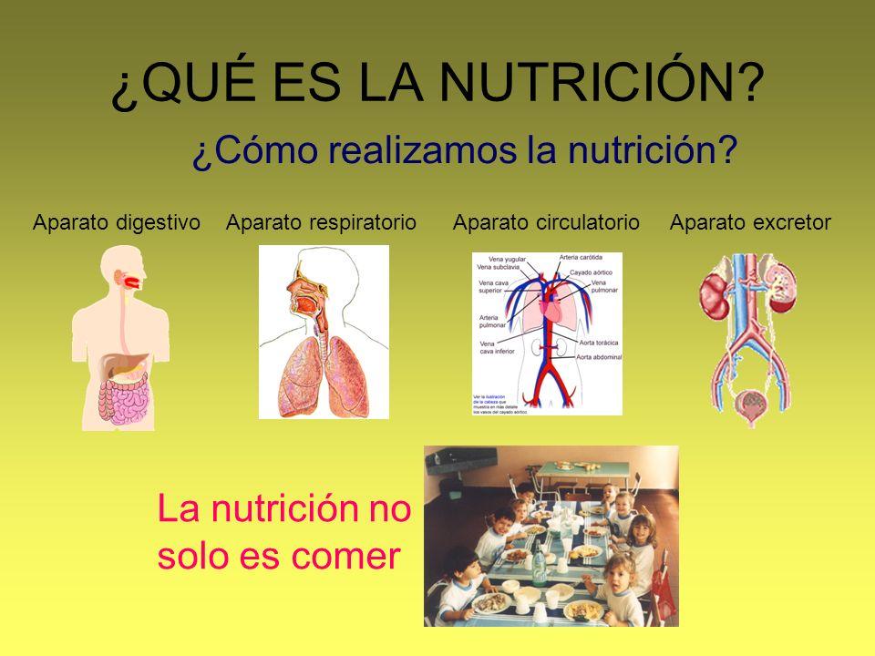 ¿Cómo realizamos la nutrición
