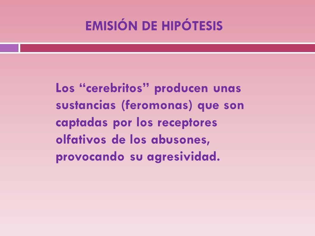 EMISIÓN DE HIPÓTESIS