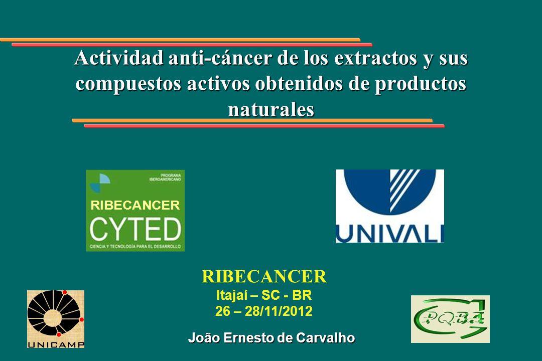 João Ernesto de Carvalho