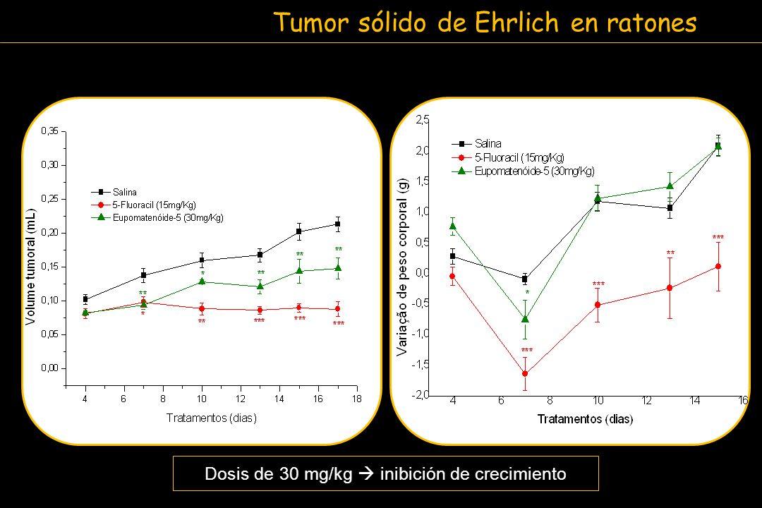 Tumor sólido de Ehrlich en ratones