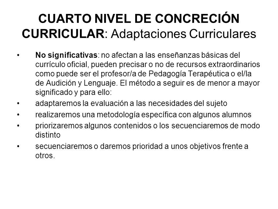 CUARTO NIVEL DE CONCRECIÓN CURRICULAR: Adaptaciones Curriculares