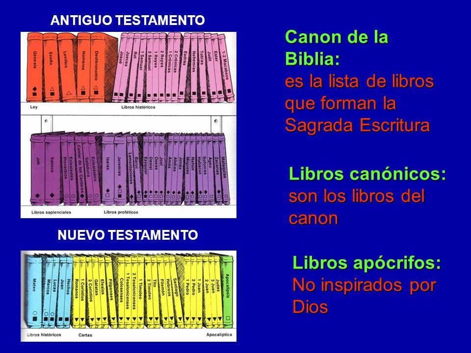 Libros canónicos: son los libros del canon