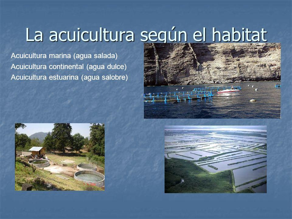 La acuicultura según el habitat