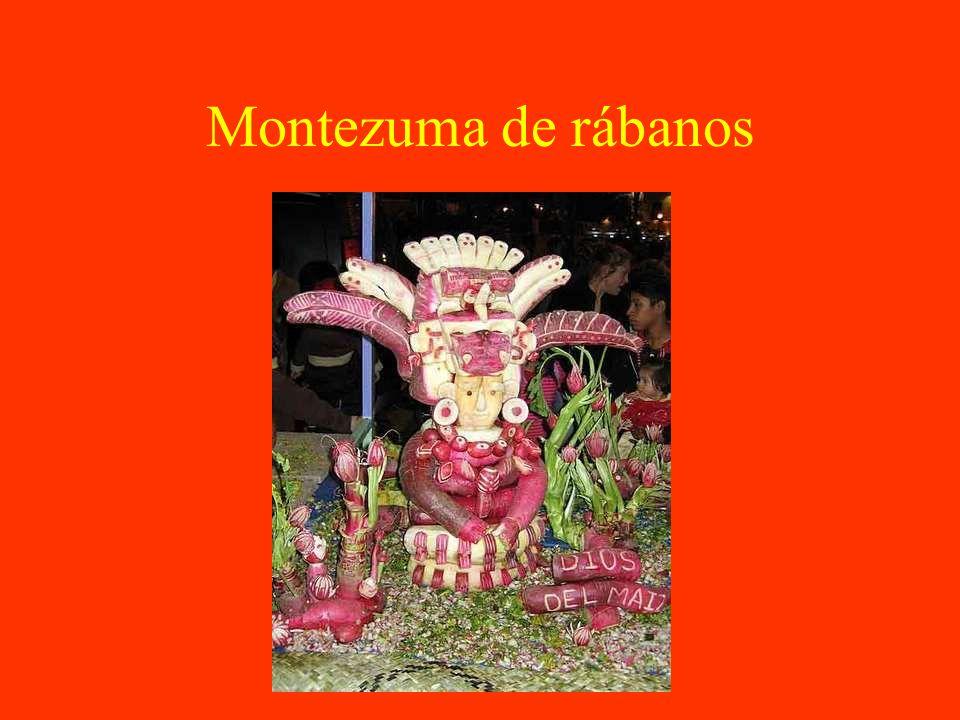Montezuma de rábanos