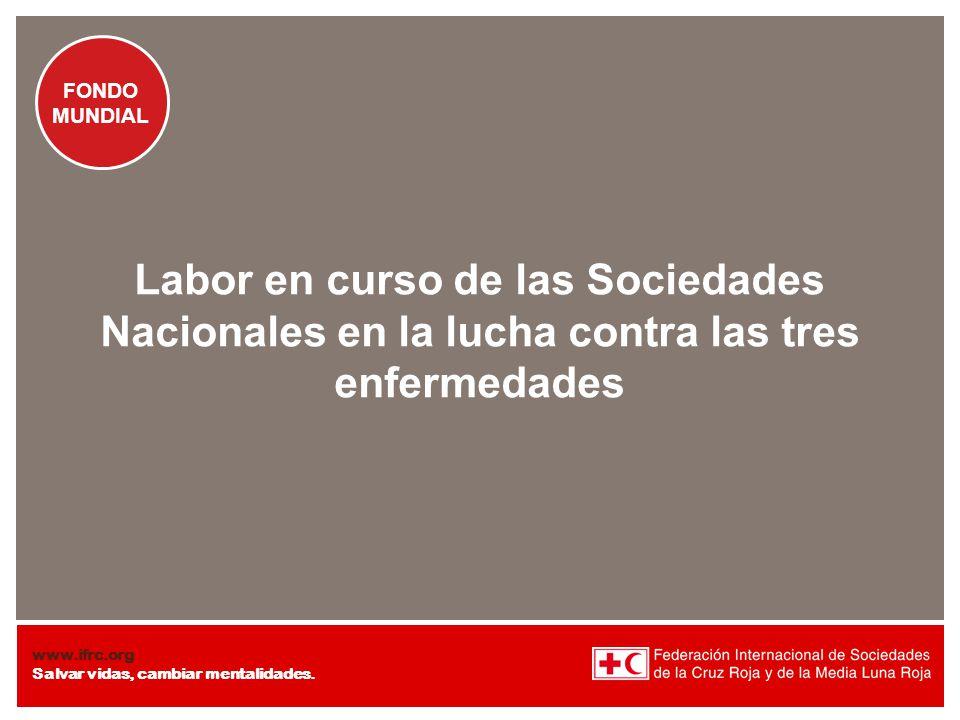 Labor en curso de las Sociedades Nacionales en la lucha contra las tres enfermedades