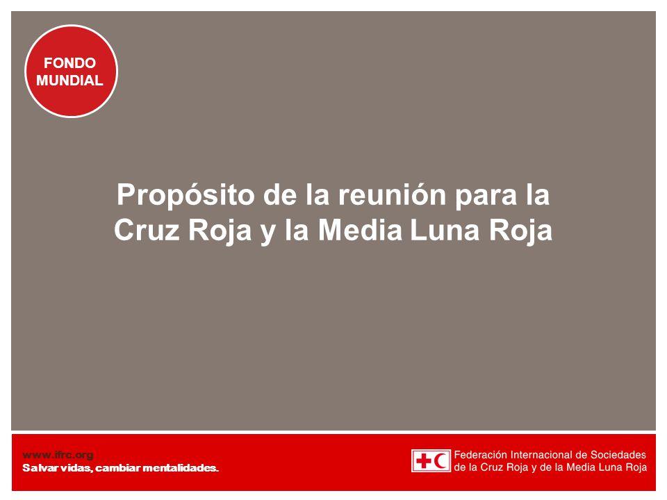 Propósito de la reunión para la Cruz Roja y la Media Luna Roja