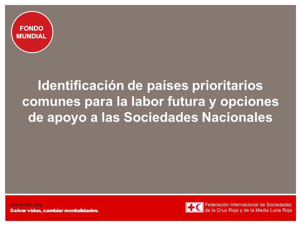 Identificación de países prioritarios comunes para la labor futura y opciones de apoyo a las Sociedades Nacionales
