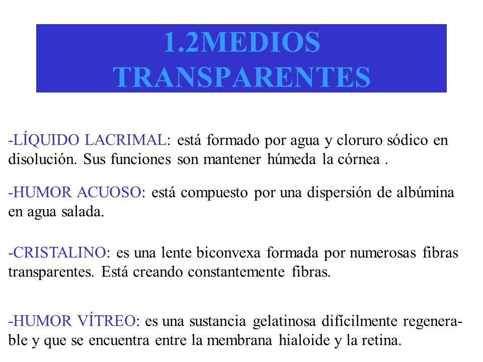 1.2MEDIOS TRANSPARENTES -LÍQUIDO LACRIMAL: está formado por agua y cloruro sódico en. disolución. Sus funciones son mantener húmeda la córnea .