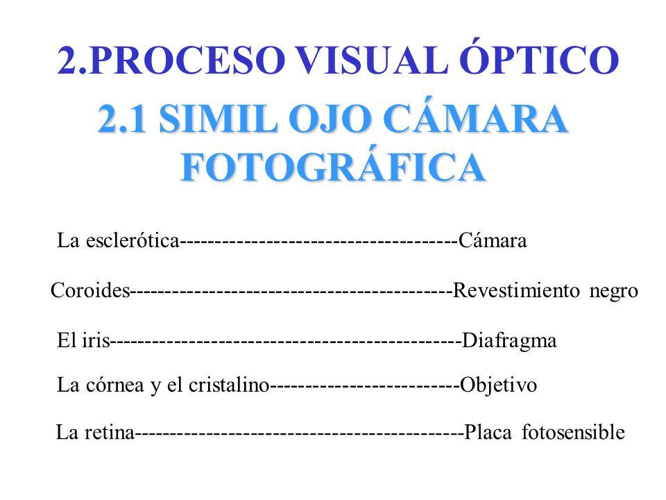 2.1 SIMIL OJO CÁMARA FOTOGRÁFICA