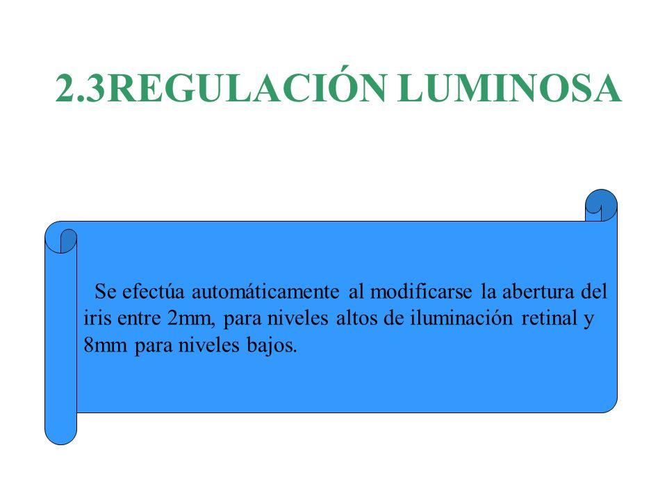 2.3REGULACIÓN LUMINOSA Se efectúa automáticamente al modificarse la abertura del. iris entre 2mm, para niveles altos de iluminación retinal y.