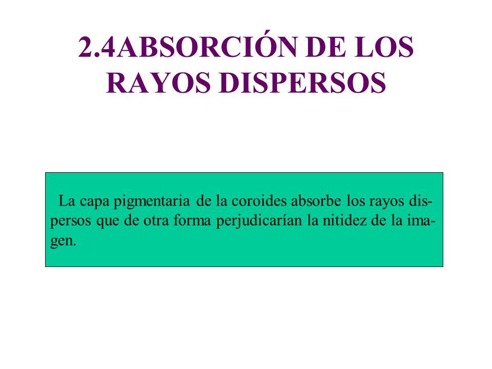 2.4ABSORCIÓN DE LOS RAYOS DISPERSOS