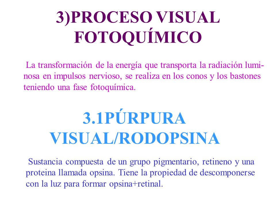 3)PROCESO VISUAL FOTOQUÍMICO