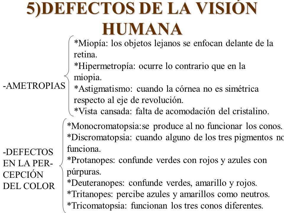 5)DEFECTOS DE LA VISIÓN HUMANA