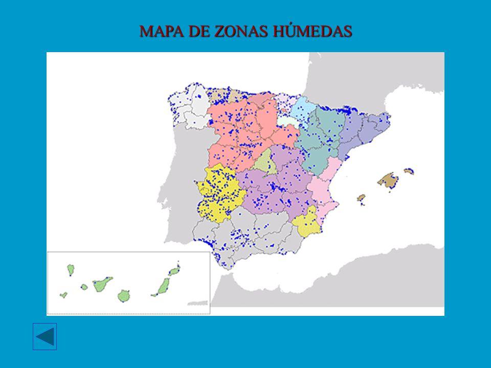 MAPA DE ZONAS HÚMEDAS