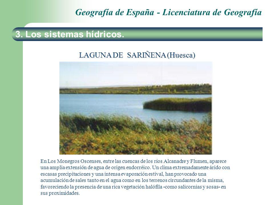 LAGUNA DE SARIÑENA (Huesca)