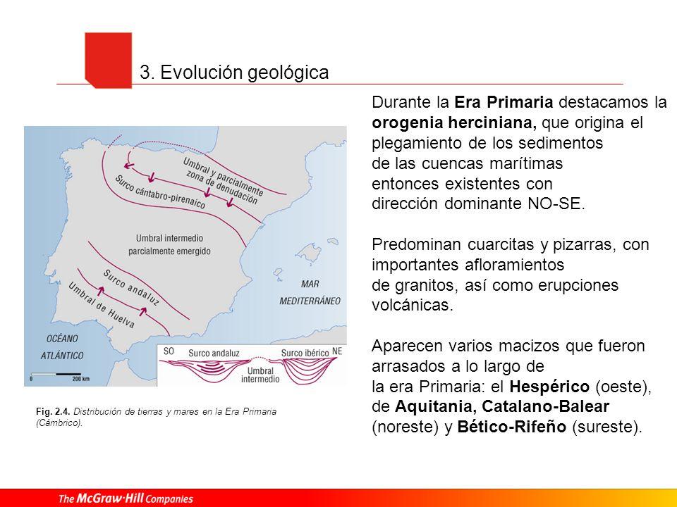3. Evolución geológicaDurante la Era Primaria destacamos la orogenia herciniana, que origina el plegamiento de los sedimentos.