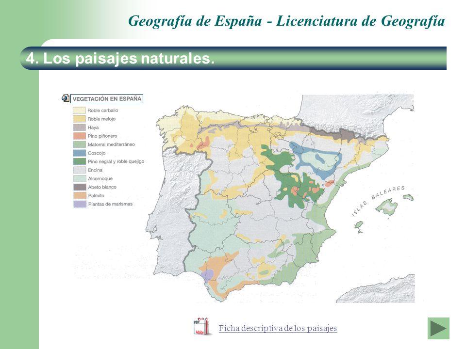 Ficha descriptiva de los paisajes