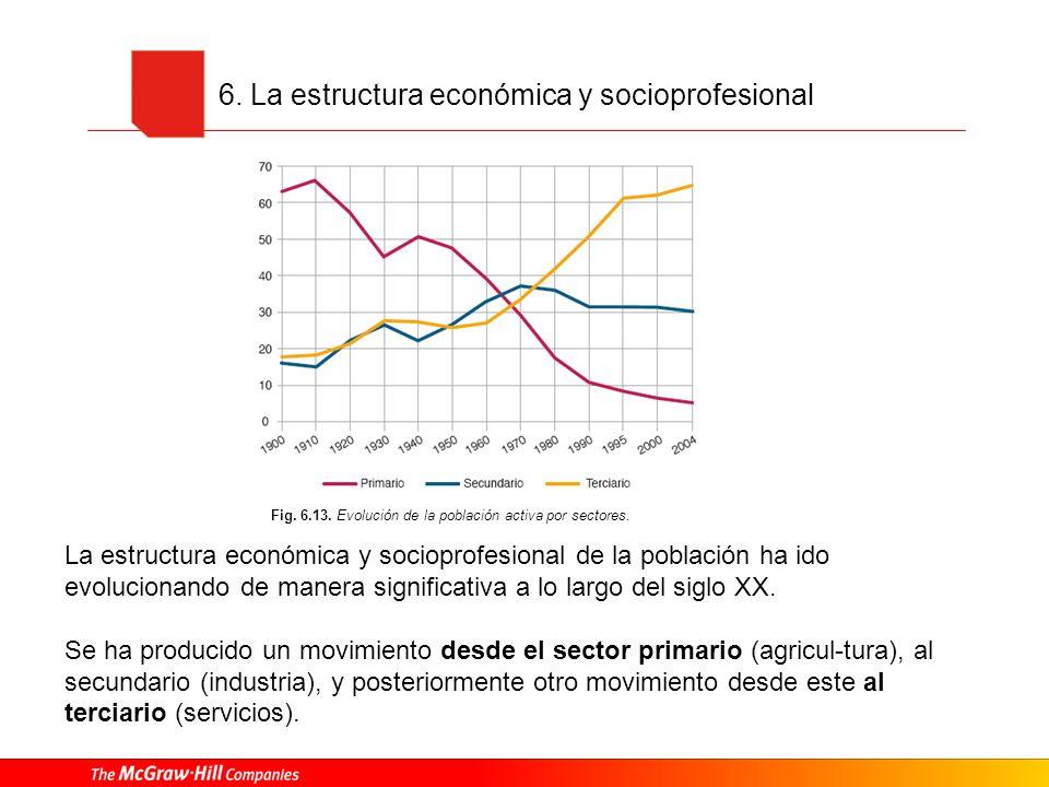 6. La estructura económica y socioprofesional