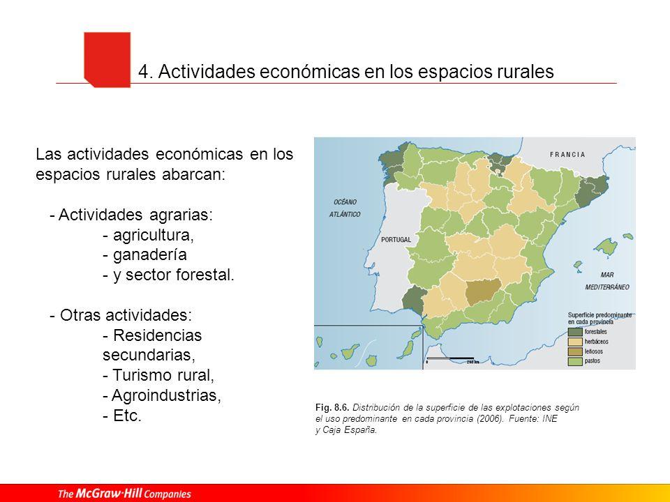 4. Actividades económicas en los espacios rurales