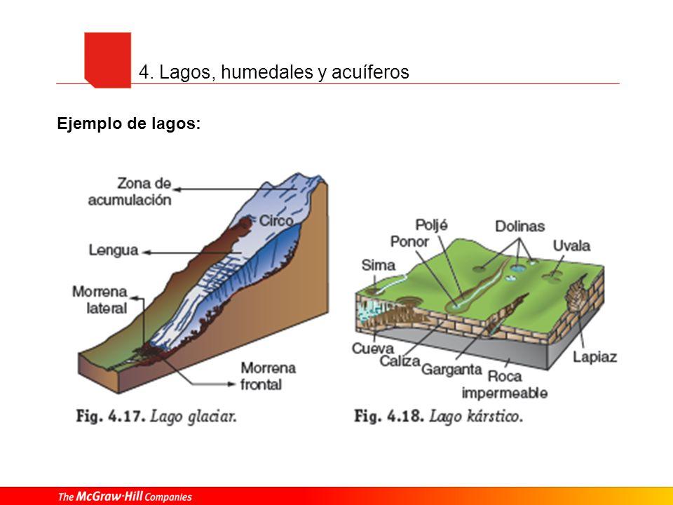4. Lagos, humedales y acuíferos