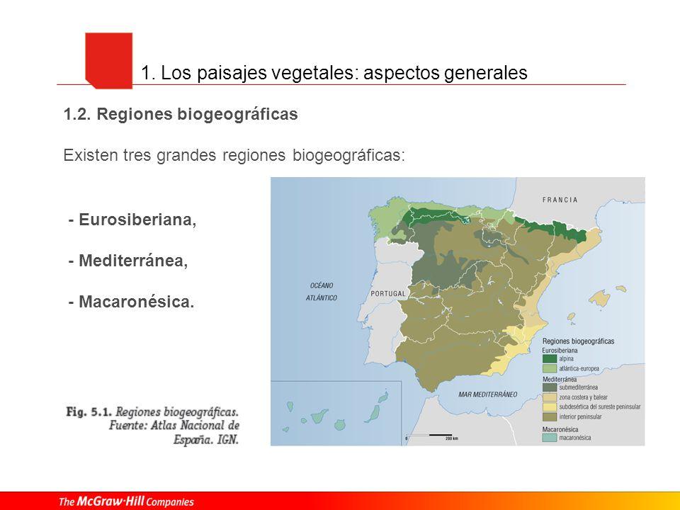1. Los paisajes vegetales: aspectos generales