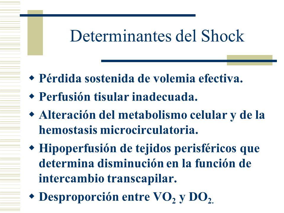 Determinantes del Shock