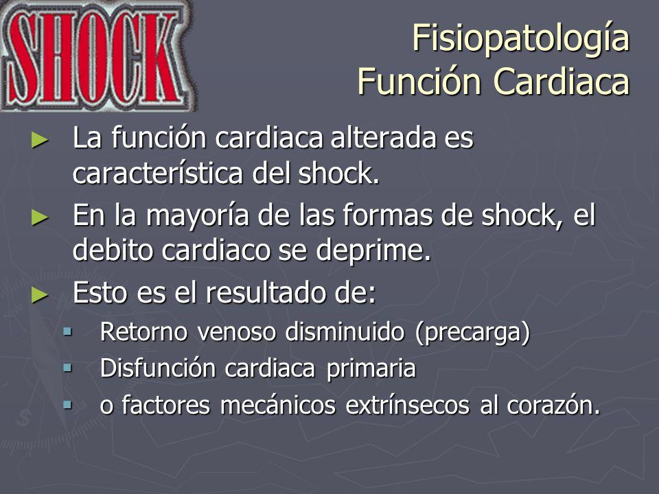 Fisiopatología Función Cardiaca