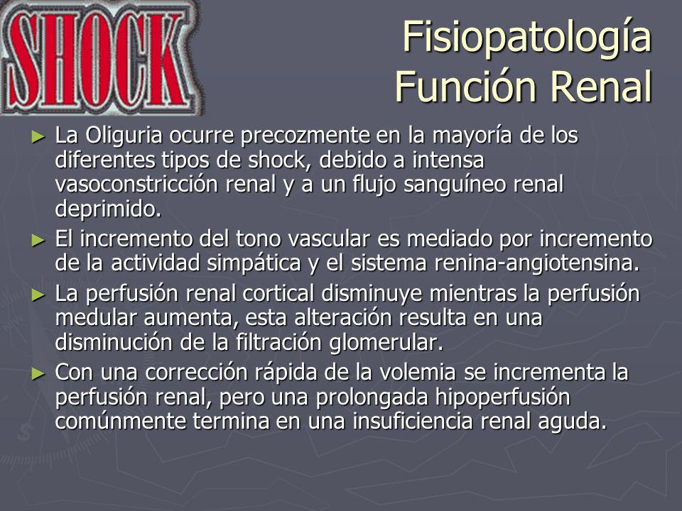 Fisiopatología Función Renal