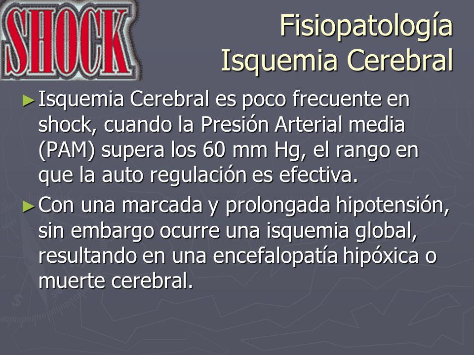Fisiopatología Isquemia Cerebral