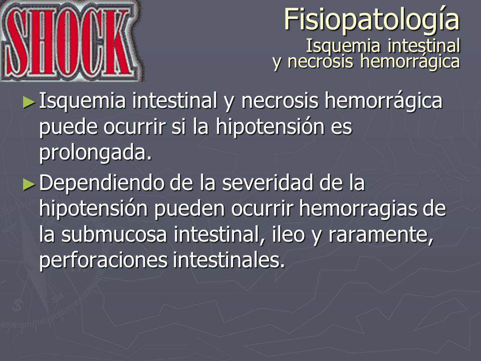 Fisiopatología Isquemia intestinal y necrosis hemorrágica