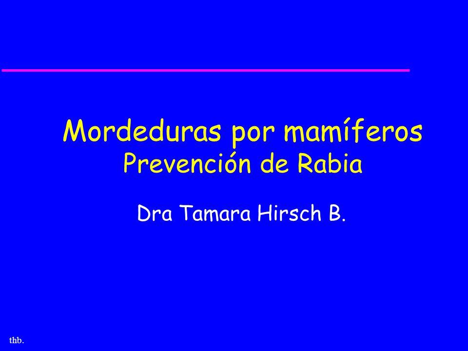 Mordeduras por mamíferos Prevención de Rabia