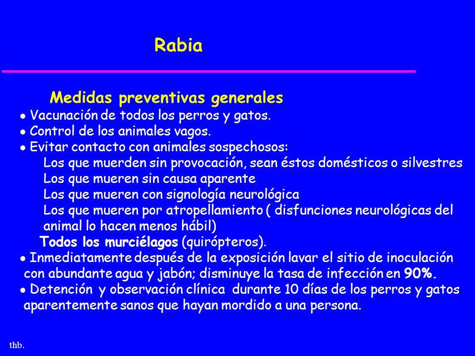 Rabia Medidas preventivas generales