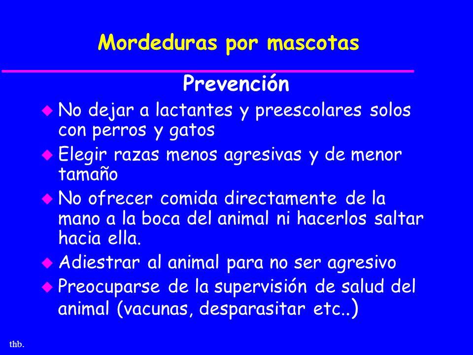 Mordeduras por mascotas