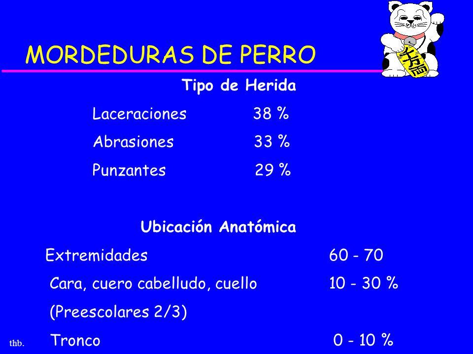 MORDEDURAS DE PERRO Tipo de Herida Laceraciones 38 % Abrasiones 33 %