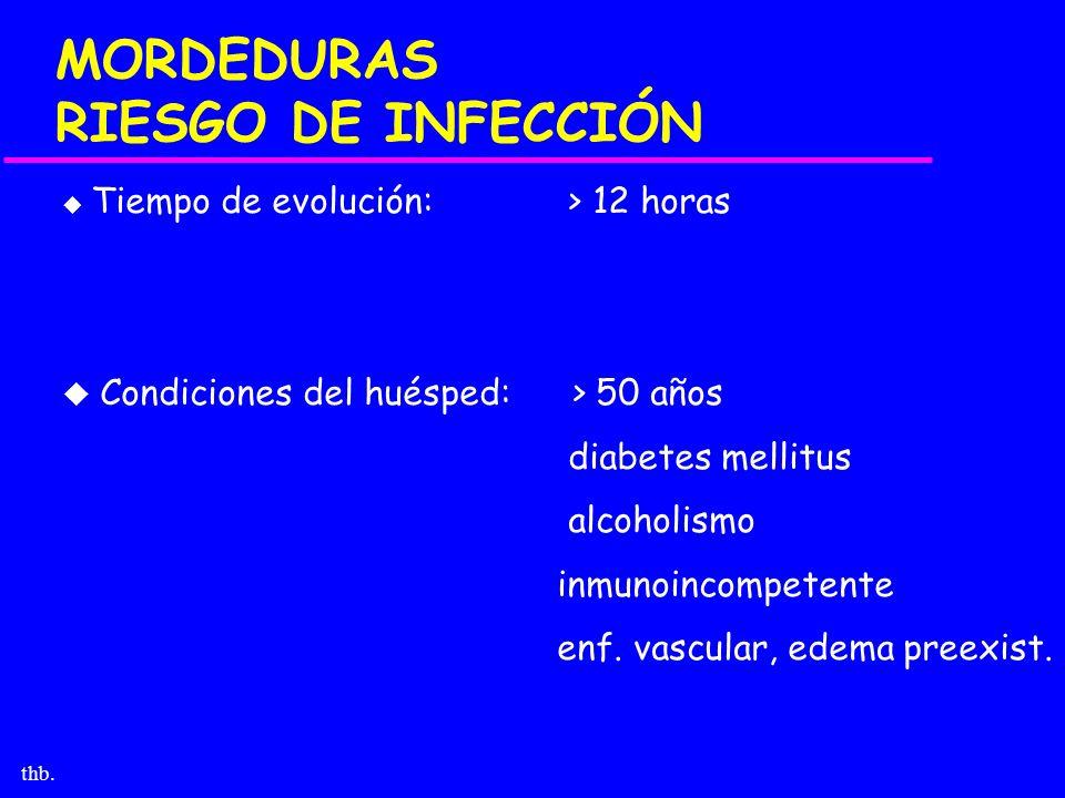 MORDEDURAS RIESGO DE INFECCIÓN