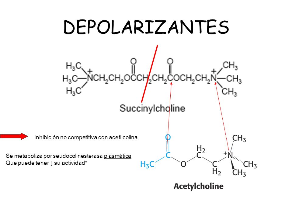 DEPOLARIZANTES Inhibición no competitiva con acetilcolina.