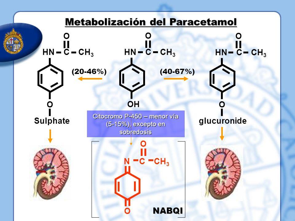Metabolización del Paracetamol