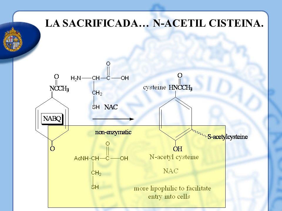 LA SACRIFICADA… N-ACETIL CISTEINA.