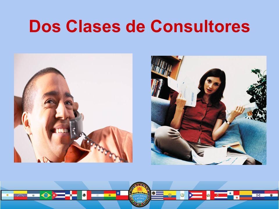 Dos Clases de Consultores