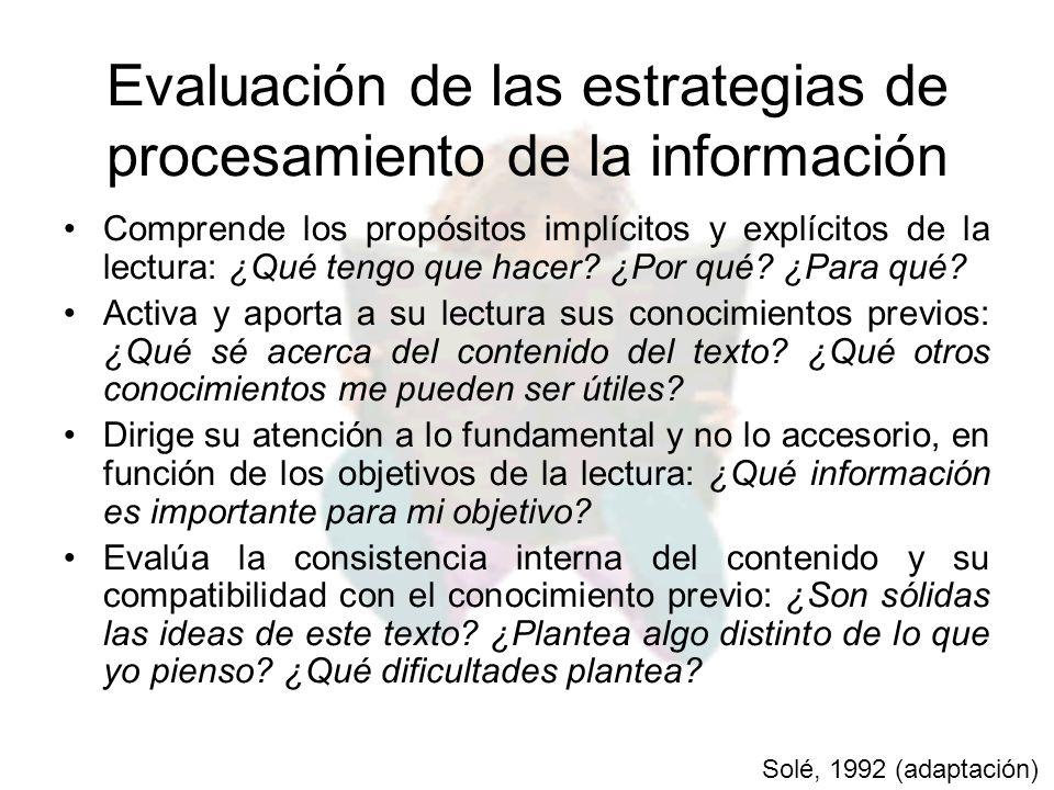 Evaluación de las estrategias de procesamiento de la información