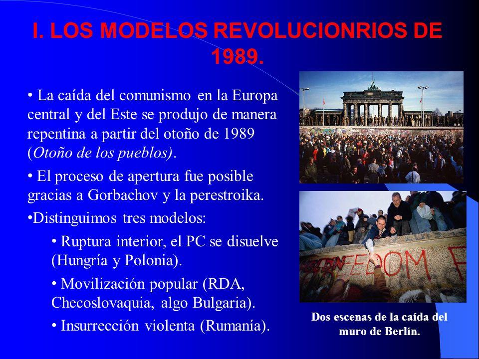 I. LOS MODELOS REVOLUCIONRIOS DE 1989.